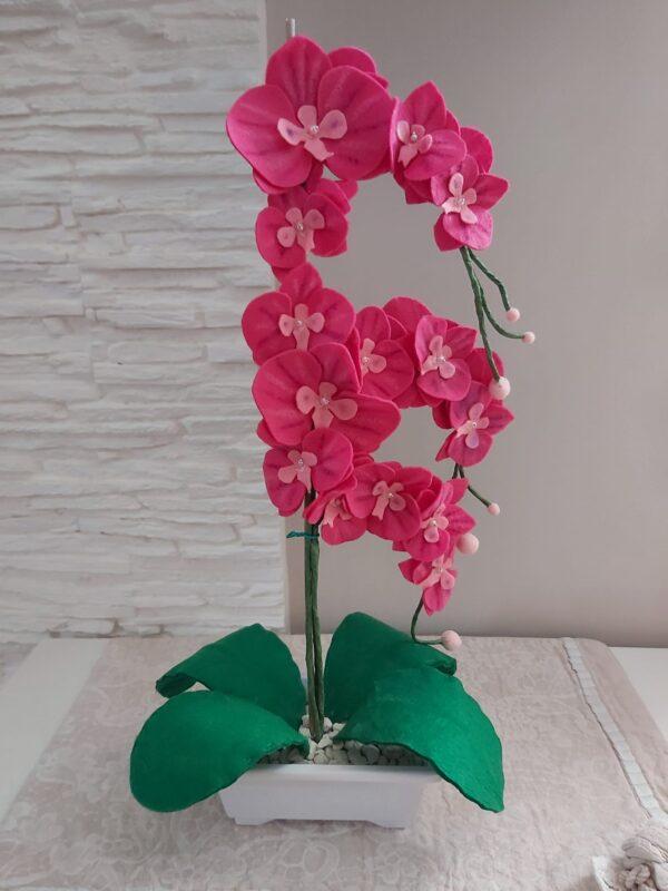 orchideainpannolencilacasacreativa